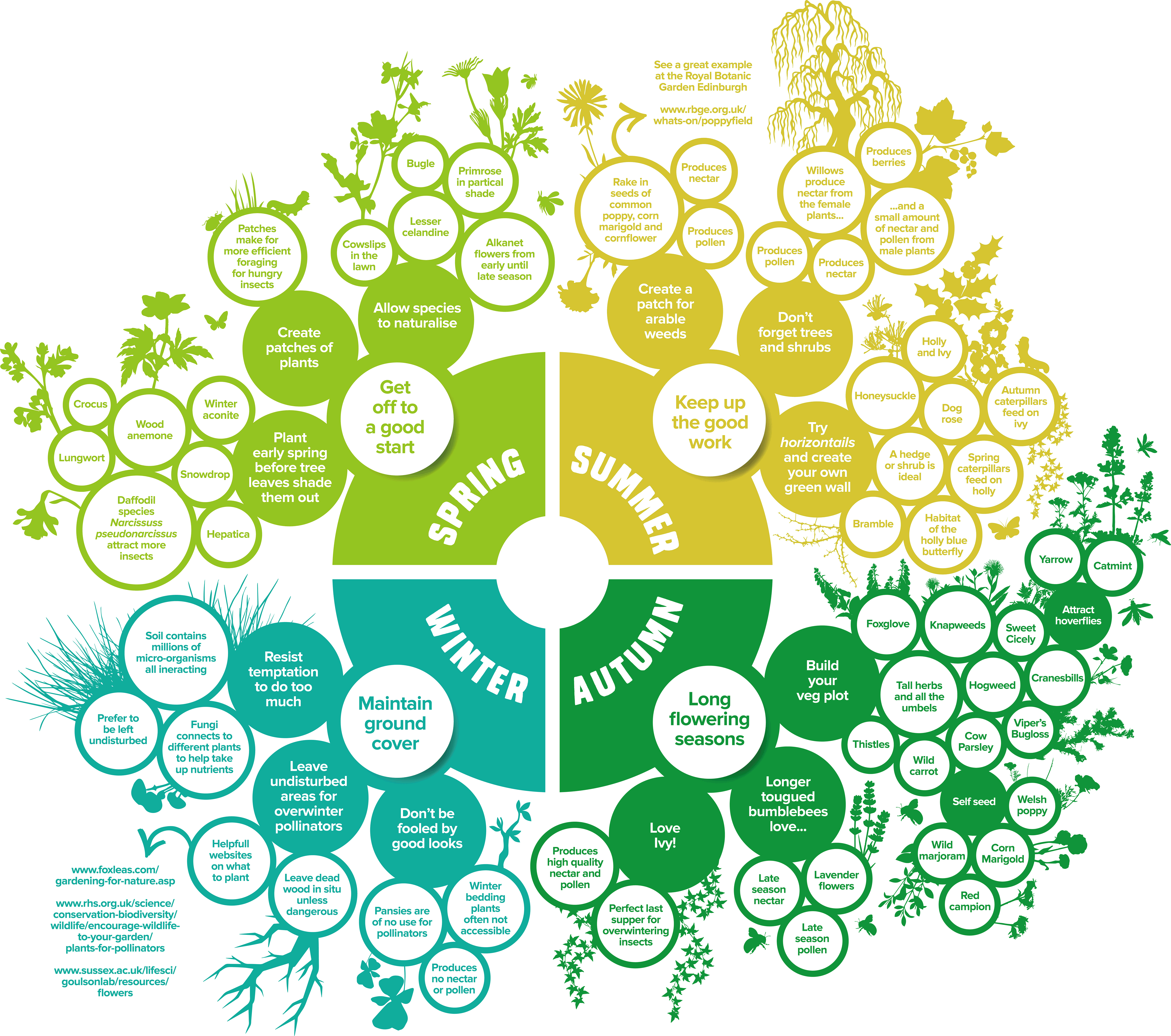 Pollinator Pledge infographic