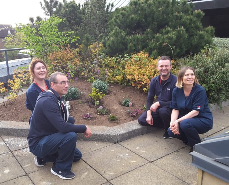 SLA team planting a heather garden, image by Standard Life Aberdeen